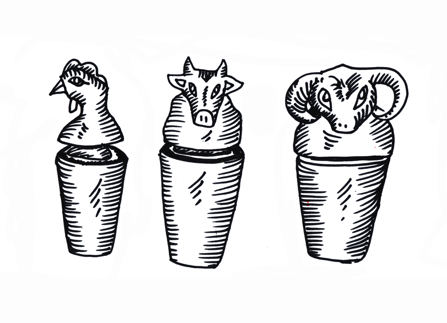 croquis vases canope