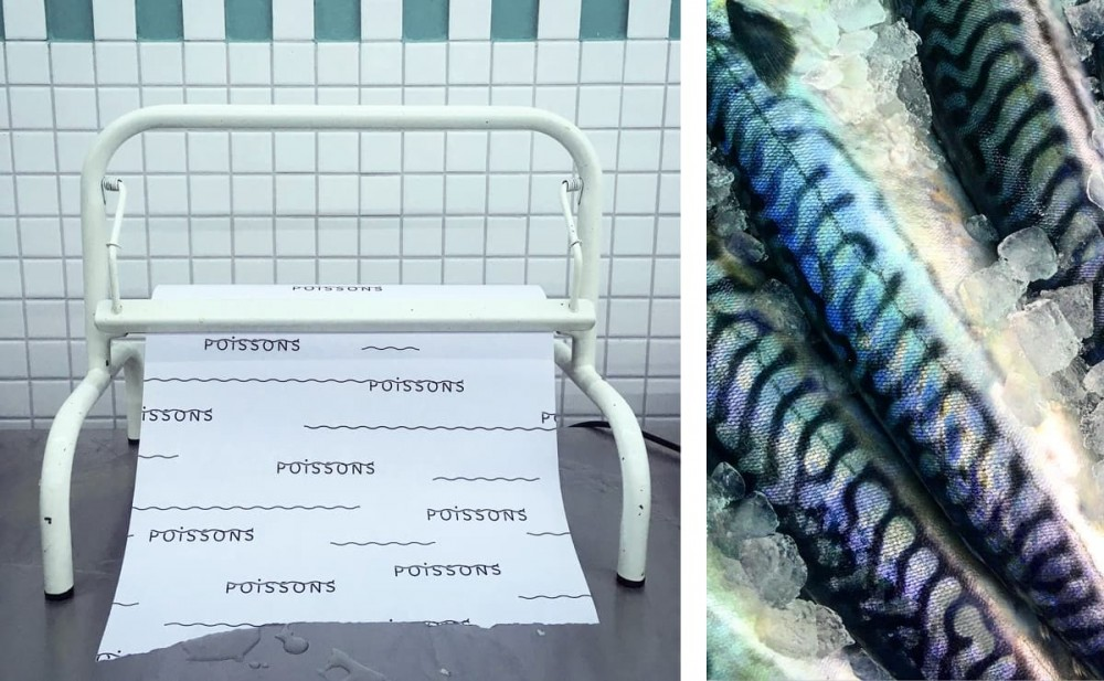 Enrouleur papier emballage poissons - maquereau, logo Poissonerie